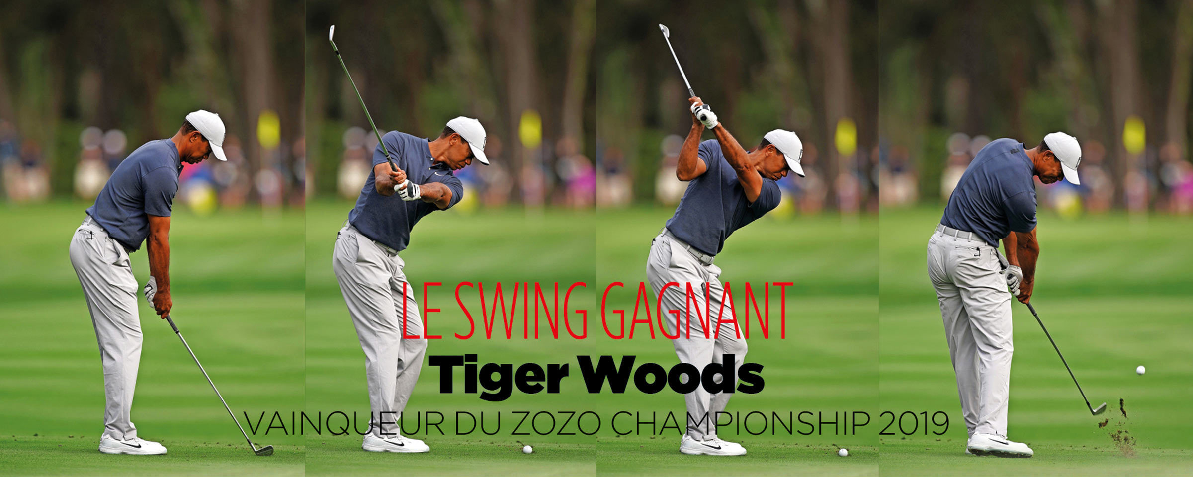 tiger-swing_200